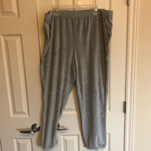 NWOT Aerie Velour Joggers